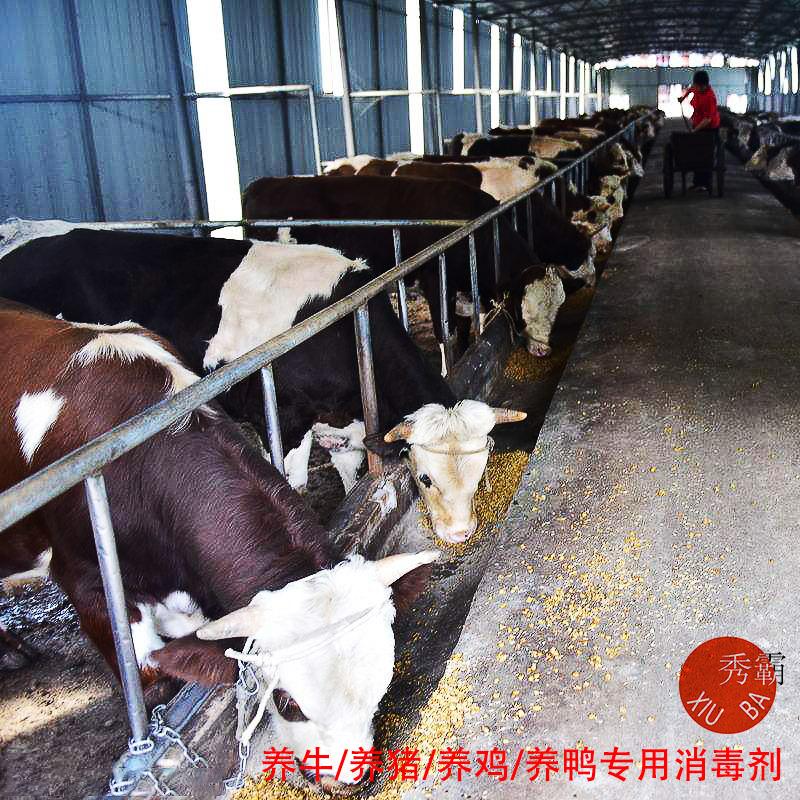 87彩店注册消毒粉(含量10%)【畜牧养殖】产品展示图3