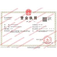 山东华实药业有限公司营业执照