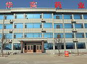 山东华实药业有限公司办公楼
