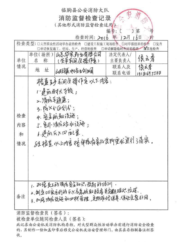 山东华实药业有限公司消防验收报告