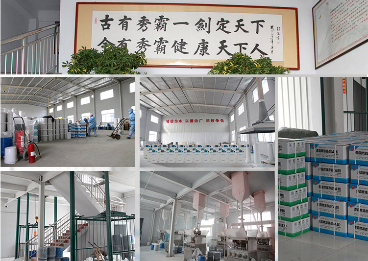 山东华实药业公司厂房图